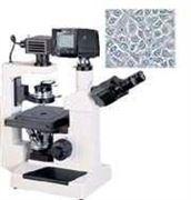 数码型倒置生物显微镜