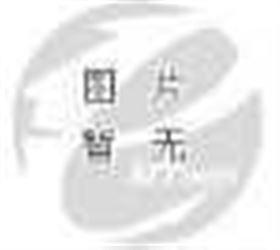 SF-101数字肺活量计