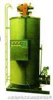立式燃油燃气有机热载体炉