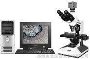 图像生物显微镜