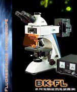 落射荧光显微镜-郑州南北仪器