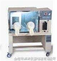 YQX-Ⅰ型厭氧培養箱