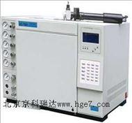 天然氣分析氣相色譜儀SP7800