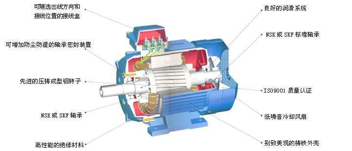 调速三相异步电动机