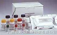 腺病毒IgG試劑盒