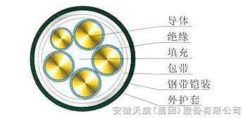 0.6/1KV5芯(4+1)芯交联聚乙烯绝缘钢带铠装聚氯乙烯护套电力电缆