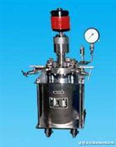 WDF型常規實驗室反應釜