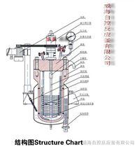 WHF開式平蓋式高壓釜