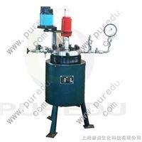 GSH-(0.1-10)L高压反应釜