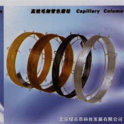 DB-1100%的二甲基聚硅氧烷毛细管色谱柱