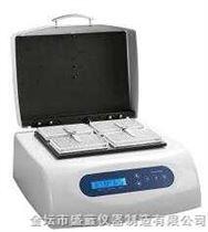 MB100-4P微孔板恒溫振蕩器MB100-4P