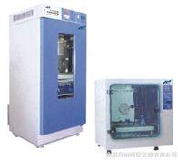DHG系列紅外干燥箱