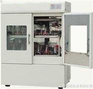 DH-2112B双门恒温培养振荡器   培养摇床