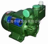 漩涡式自吸泵|家用清水自吸泵