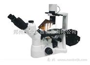 倒置荧光显微镜(BDS200-FL)价格
