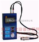 上海TT100|超声波测厚仪|时代TT100