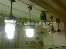 防爆平台灯