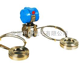 1151DP/GP型带远传装置 的差压