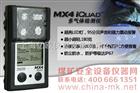 防尘防水型多气体检测报警仪|MX4IQuad|复合气体检测仪