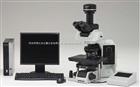 olympus 全电动智能生物显微镜BX63
