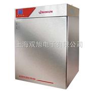 BG270BG-270隔水式培养箱