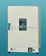 DHG9123DHG-9203A精密恒温箱