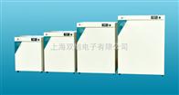 DNP9272DNP-9272电热恒温培养箱