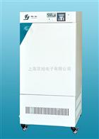 HWS400HWS-400恒温恒湿箱