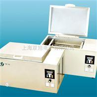 DKU2DKU-2电热恒温油槽