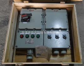 BXX51系列防爆动力检修箱IIB、IIC
