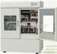 BX-1112F立式双门双层恒温培养振荡器