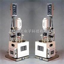 HR-2HR系列多功能反应器,上海硕光HR系列多功能反应器,HR系列多功能反应器生产厂家