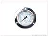 YN-60ZT耐振压力表(轴向带边型)