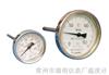 WSSWSS双金属温度计,WSSX双金属温度计,WSSX电接点双金属温度计,WSS型双金属温度计