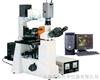 DFM-60C倒置荧光显微镜DFM-60C