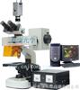 DFM-20C荧光显微镜