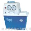 SHB-IIIA型水循环真空泵