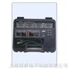 台湾泰仕WM-02可记录瓦特功率表