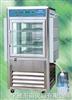 RXZ-500A人工气候箱 RXZ-500A