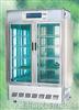 RXZ-1500A人工气候箱 RXZ-1500A