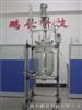 SF-30D30L双层玻璃反应釜|新型多功能玻璃反应器