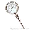 径向型WSS-411双金属温度计