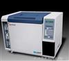 GC112AGC112A-G汽油芳烃色谱仪