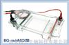 BG-subMIDI多用途水平电泳仪BG-subMIDI多用途水平电泳仪 电话029-68699414