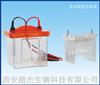 BG-tubeMINI管式电泳仪BG-tubeMINI管式电泳仪 电话029-68699414