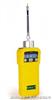 PGM-7600美国华瑞VOC PGM-7600 气体检测仪