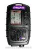 PGM-3000美国华瑞PGM-3000气体检测仪