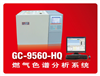 GC-9560-HQ天然气分析专用色谱仪