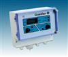 Guardian Plus在线甲烷分析仪