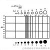 C2型網形目鏡測微尺
